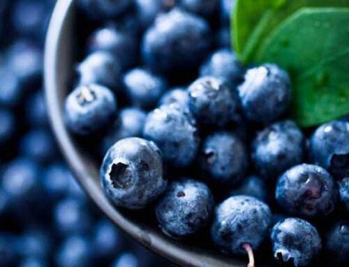 10 Superfoods That Should Be In Your regular Diet